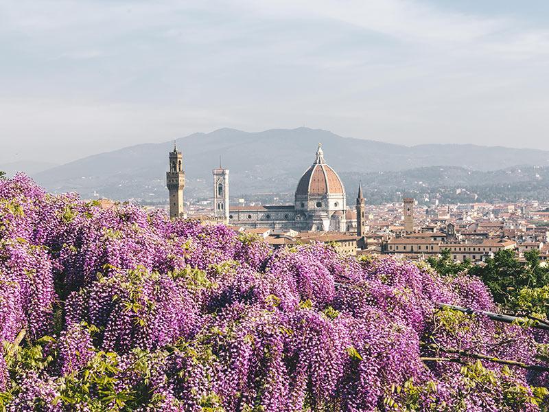 сады Флоренции